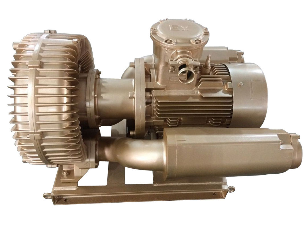 7 5kw Explosion Proof Vacuum Pump Ring Blower With Siemens Motor